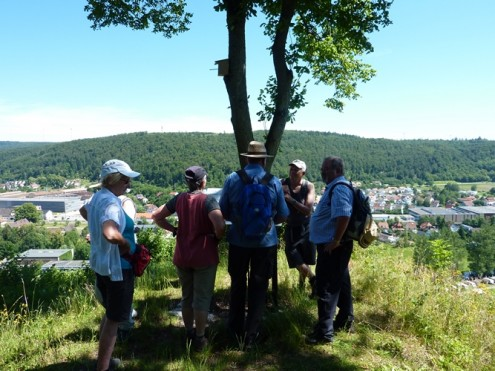 Albschäferweg Zang-HDH vom 10. Juli